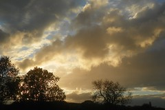 Storm clouds and sunlight (Martha-Ann48) Tags: weather storm clouds sunlight silhouettes sky brooding trees golden inside looking out