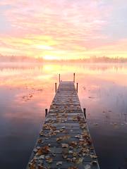 sunrise @thewbr 2016 (unedited) (Ma Wolff) Tags: thewbr unedited ethereal orange pink colors fall autumn leaves dock lake sunrise