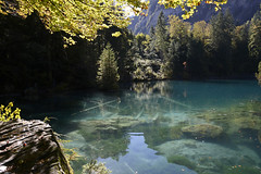 The blue Lake (JohannesMayr) Tags: blausee blue lake berner oberland schweiz switzerland blau wasser berg mountain water spiegelung reflections tree bäume felsen rocks leaves blätter herbst autumn