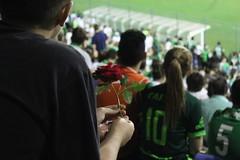 IMG_3908 (gbspen1) Tags: chapecoense forachape chapec fuerzachape avio acidente 2016 soccer futebol