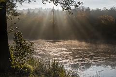 The one (jan.scho) Tags: wolken see teich tmpel reflektionen sonne strahl sonnenstrahl strahlen diffus