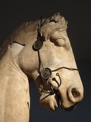 Mausoleum Horse (Aidan McRae Thomson) Tags: horse statue sculpture ancient greek classical halicarnassus mausoleum britishmuseum london marble