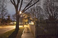 327/366 (local paparazzi (isthmusportrait.com)) Tags: 366project canon5dmarkii canon24105mmf4lisusm eos lopaps pod 2016 redskyrocketman localpaparazzi isthmusportrait madisonwi danecountywisconsin lowlight dark light shadows longexposure tripod 24105mm f4l is usm isthmus outdoors night ef flare glare star starburst street pavement wetstreet sidewalk fence