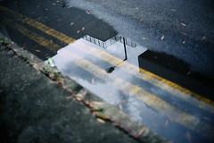 rain stopped (Steve only) Tags: konica hexar rf minolta mrokkorqf 12 f40mm 402 f2 40mm rangefinder fujifilm 富士業務紀錄用カラーフィルム100 100 film epson gtx970 v750 snaps city rain reflection sky cloud