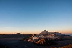 _DSC0567 (gfcnr) Tags: sunrise bromo volcano bali indonesia