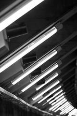 Tube (dsign) Tags: black bw blackandwhite tube rhre row reflection round white shadow shape perspective pattern perspektive schwarz schatten schrfentiefe schwarzweiss train trainstation light lights line licht streetlight lamp neon again