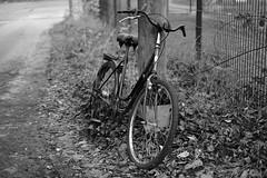 abandoned bicycle  :(  2 (Amselchen) Tags: bw mono bicycle fuji fujinon fujifilm fujifilmxseries xt2 fujixt2 xf35mmf14r bokeh dof blur depthoffield acros