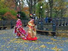IMG_8109 (irischao) Tags: centralpark manhattan newyorkcity nyc 2016 fall autumn fallfoliage