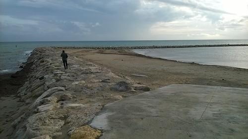 el paseante solitario