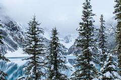 Winter is here, Lake Louise, Alberta. Canada. (Nestor Velasco) Tags: landscape nikon d5300 nikond5300 alberta lake luoise lakelouise canada paisaje landschaft