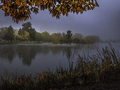 The Fog Lifts (keith_shuley) Tags: citypark denver downtown fallcolors fall red orange fog olympusomdem1