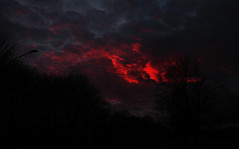 Apocalyptic sky (PictrP4nda) Tags: sky apocalyptic beautiful evening red tree trees ominous sunset