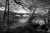 The bridge. (Riley_123) Tags: nostellpriory yorkshire national trust