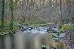 Cascade de la foret de la Robertsau (regis.muno) Tags: nikond7000 cascade foret robertsau strasbourg alsace poselongue longexposure cascadedelaforetdelarobertsau foretdelarobertsau forest waterfall hdr strasbourgrobertsau france