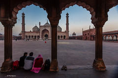 Worshippers and Jama Masjid mosque at dawn - New Delhi, India (Phil Marion (68 million views - thank you all)) Tags: punjabi goan indian kids desi hindu tamil 5photosaday beautiful cosplay candid beach woman girl boy teen 裸 schlampe 懒妇 나체상 फूहड़ 벌거 벗은 desnudo chubby young ふしだらな女 nackt nu निर्वस्त्र 裸体 ヌード नग्न nudo ਨੰਗੀ голый khỏa upskirt جنسي 性感的 malibog कामुक セクシー 婚禮 hijab nijab burqa telanjang обнаженный сексуальный tranny عري nude naked sexy برهنه وقحة nubile phat cleavage slim plump sex slut nipples ass hot xxx boobs dick balls tits fat mosque moslem