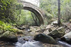 Puente romano en el rio de La Miel (jamp_foto) Tags: puenteromano rio naturaleza agua antiguo verde roca rock water green antique nature river algeciras rodelamiel andalusia spain jampfoto