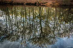 Reflexionen (Dagmar' s Fotos) Tags: atmosphere atmosphäre scenic stimmung winter colour color reflexionen