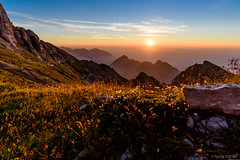 Alba sul Carega (LucaSantin) Tags: 24120f4 alpi carega d750 lessinia nikon