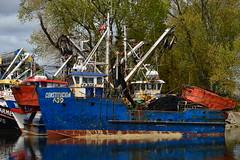 El Constitucin - Valdivia - Chile (Carlos Garca Soto) Tags: chile en boat barco shrimp el un constitution constitucin valdivia the camaronero