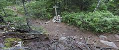 DC3279  DSC05775NX5Na  Trail Marker  © 2014 Paul Light (Paul Light) Tags: landscape woods rocks path roots southwestharbor trailmarker acadianationalpark flyingmountain reallyrightstuffpanokit