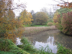 Autumn leaves around the lake (Beth M527) Tags: denmark parks ponds botanicalgardens aarhus rhus 2014 photobypeter