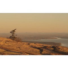 #Tbt Sunrise on Cadillac Mountain in Acadia National park Maine. This spot is the first in the country to see the sun each day. Check out the film I shot with @thejoenugent there 3 years ago http://youtu.be/DxEDHGfkEnU #rei1440project #acadianationalpark (dougrm1513) Tags: square squareformat iphoneography instagramapp uploaded:by=instagram