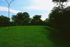 Green (papilionoidea_) Tags: parque braslia asa norte vsco