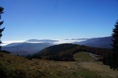 Vedere spre Cheia de deasupra cabanei Muntele Roșu