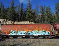DWOT, COOL 45 (YardJock) Tags: railroad metal train graffiti steel ant spraypaint boxcar freighttrain rollingstock benching dwot cool45 benchreport