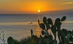 (Antonio Zafonte) Tags: mare alba sole sicilia capozafferano