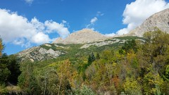 Mountains near Vallouise (tumpshy) Tags: autumn trees sky cloud france mountains alps rock forest montagne automne woods autumncolours arbres cumulus nuage arbre fort roche montagnes couleursdautomne frenchalps leciel vallouise hautesalpes francegermany provencealpescotedazur earlyautumn montane dautomne montaneforest lesalpes montagneux fortdemontagne lafort cumulushumilis leautomne lesalpesfrancaises lamultitudedemains tumpshy learbre themultitudeofhands