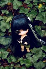 The Hunt (Nokylema) Tags: doll sara cruz pullip custo nokylema