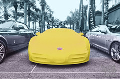 Does Anyone Not Know What This Is?  Amelia Island 2011 (gswetsky) Tags: sports french island european amelia concours bugatti veyron delegance