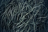#7946 (UBU ♛) Tags: blues blunotte blunero blupolvere bluacqua blutristezza unamusicaintesta landscapeinblues bluubu luciombreepiccolicristalli ©ubu