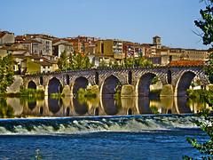 Puente de Piedra (HDR) (Luicabe) Tags: luiscabellopuentepiedrariodueroaguazamorayarat1luicabeenazamoradoolympusomdem10