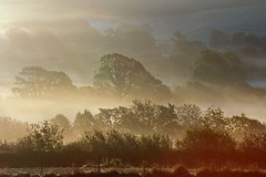 Autumnal Mists (John Ibbotson (catching up!)) Tags: morning autumn trees sun mist wales october aberystwyth ceredigion coch comins