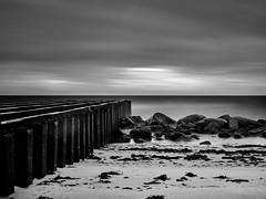 Löderup beach (Theolde) Tags: hasselblad p45 planar2880 leebigstopper skancheli