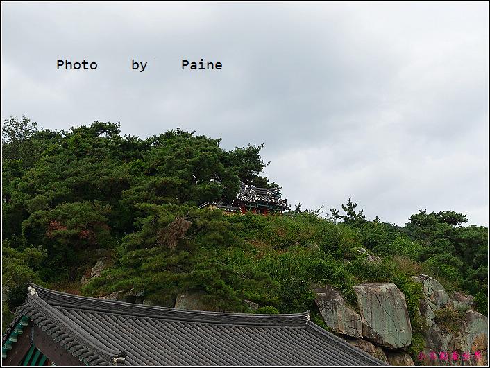 07崇信殿 (5).JPG