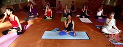 "padmakarma-yoga-kovalam-india • <a style=""font-size:0.8em;"" href=""http://www.flickr.com/photos/129392325@N08/15584866739/"" target=""_blank"">View on Flickr</a>"
