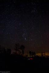DSC_2478 (RihardsVolans) Tags: trees sky night stars lights