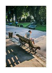 Jardim da Estrela, Lisboa (Sr. Cordeiro) Tags: park street man portugal 35mm bench reading newspaper fuji lisboa lisbon f14 estrela banco jardim fujifilm rua jornal homem fujinon ler cadeira xf jardimdaestrela xpro1 jardimguerrajunqueiro