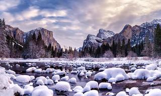 Brisk | Yosemite