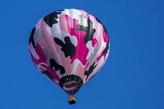 Albuquerque Balloon Fiesta 2014  14 (Largeguy1) Tags: pink canon fiesta mark iii balloon albuquerque bluesky 5d approved 2014