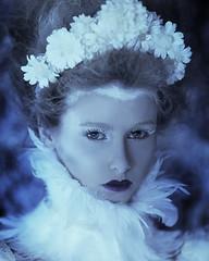 Ice Queen II (Daniela Majic) Tags: blue portrait white fashion hair ballerina feather makeup dreams secretgarden fairytales blueyes setdesign icequeen ontariophotographer feathercollar danielamajicphotography rougepony danielamajicsecretgarden