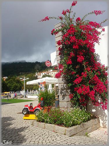 Monchique (Portugal)