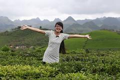 _MG_1113 (liem.ionetour) Tags: travel beautiful landscape nice asia tour du vietnam tay viet mai re gia dep sapa nam bac chau ione maichau dulich mocchau taybac hapdan ionetour