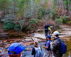 On Laurel Creek above Laurel Falls (mikerhicks) Tags: usa fall landscape geotagged photography unitedstates hiking tennessee backpacking dayton laurelcreek tennesseestateparks laurelsnowpocketwilderness cumberlandtrailstatepark laurelsnowstatenaturalarea sigma18250mmf3563dcmacrooshsm cumberlandspring geo:lat=3554794333 geo:lon=8502250000 canoneos7dmkii laurelsnowsegment