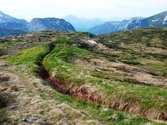 P1130716 (Knut Skarsem) Tags: alps alpen karnischealpen alpene carnicalps viaalpina easternalps