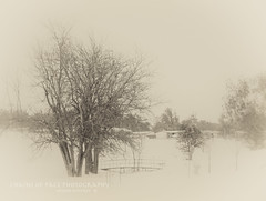 Early Winter (Chains of Pace) Tags: winter snow storm oklahoma vintage landscape sony western guymon