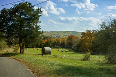 Hopewell Township farm (Blake Bolinger) Tags: farm hopewell nj newjersey mercercounty